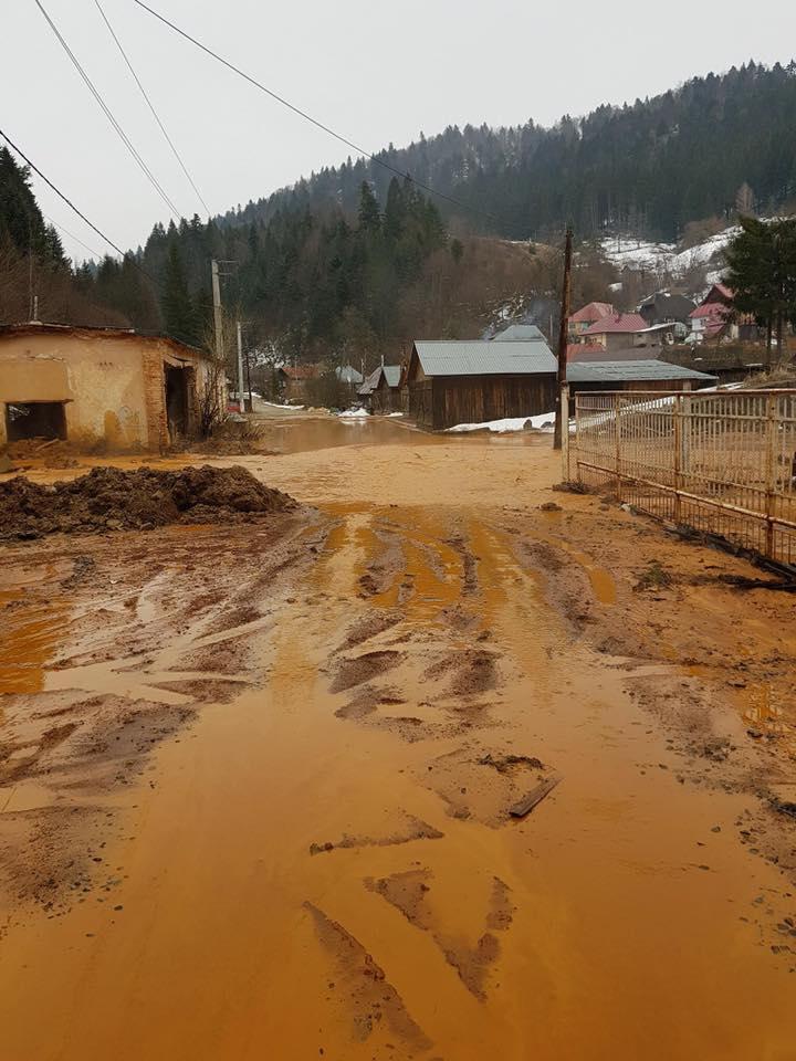 Alt accident ecologic in Maramureș